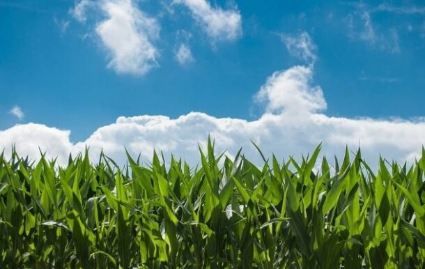 Agriculture Software Deep Dive – Agriculture Market Themes, Players, & Investors