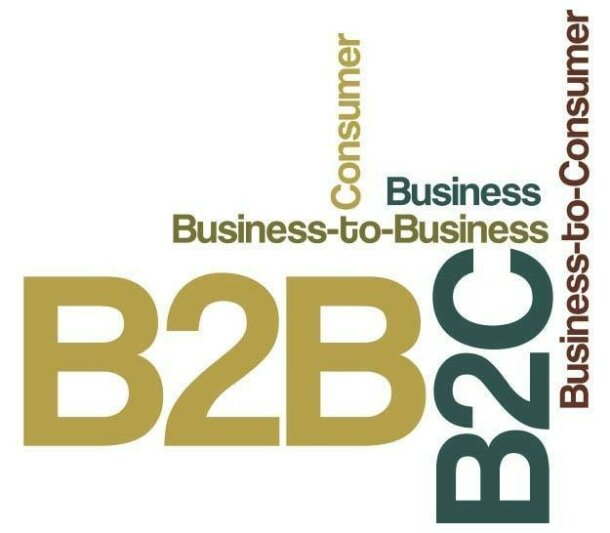 5 Things to Consider Before Starting a B2B Business at a B2C Company
